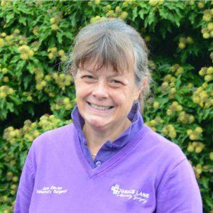 Grace Lane Vet team member Jane Davies headshot