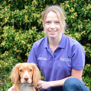 Grace Lane Vet team member Sophie Thurston with lovely spaniel
